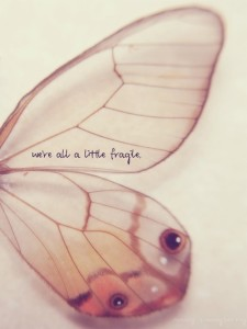 fragiliteit1